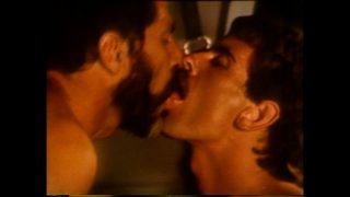 VCA Gay – LA Tool